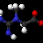 Creatine for Testosterone