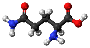 L-Glutamine molecule, 3-D rendering. By Jynto [CC0], via Wikimedia Commons