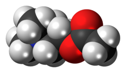 Acetylcholine-cation-3D-spacefill
