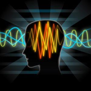 Vector Brain waves