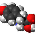 L-Tyrosine for Energy
