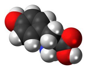 L-Tyrosine 3D Model