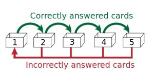 "The Leitner System adopts this principle of ""Spaced Repetition"" in the form of flash card review."