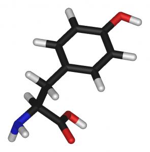 L-tyrosine-3D-sticks
