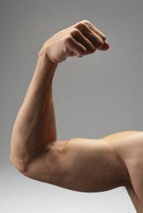 T helps make muscle. Muscle helps make T. Arginine helps both.