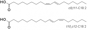 CLA top two isomers
