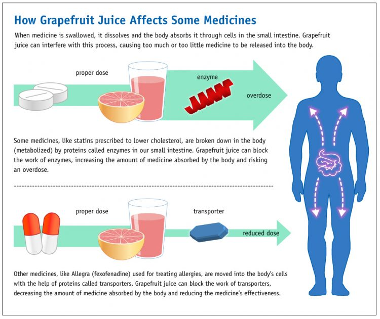 By FDA graphic by Michael J. Ermarth (Grapefruit Juice and Medicine May Not Mix) [Public domain], via Wikimedia Commons