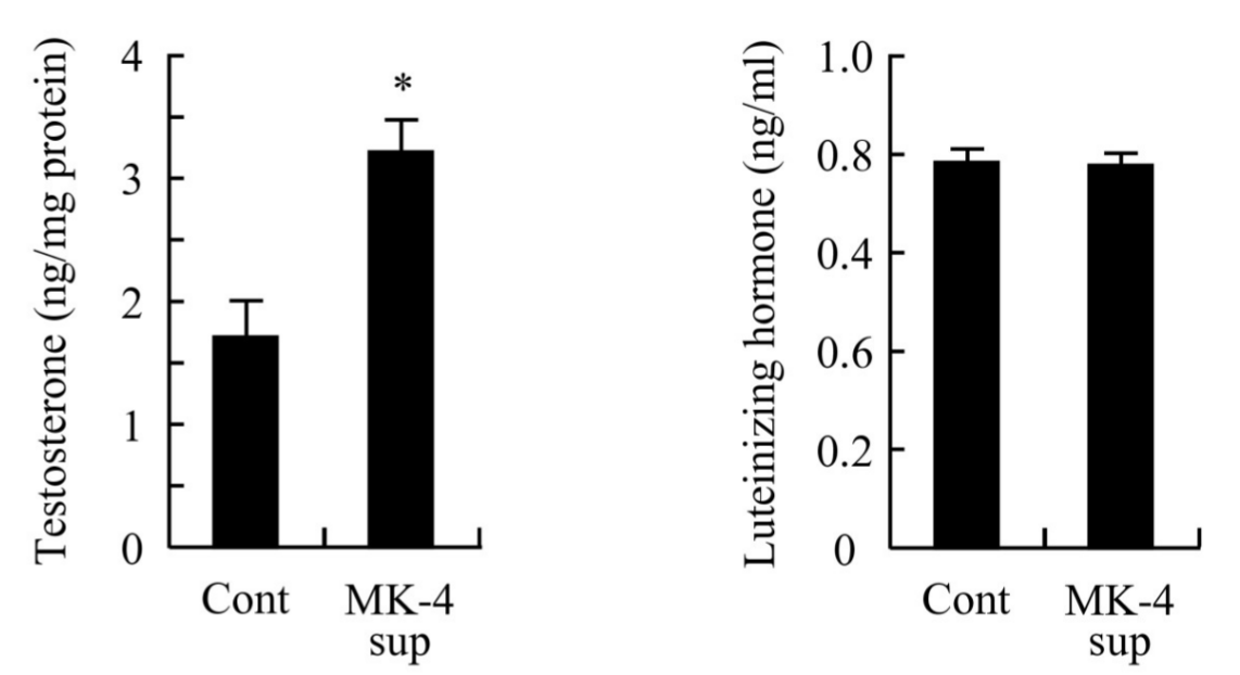 MK-4 administration increased T levels without inducing any change on LH secretion.