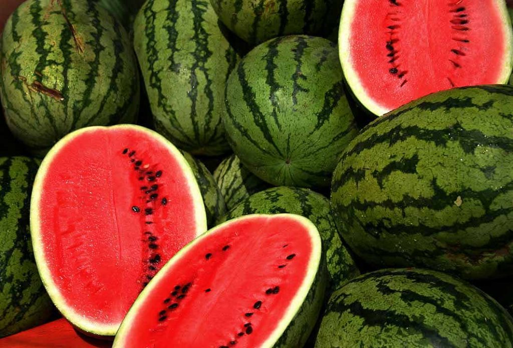 watermelon citrulline source