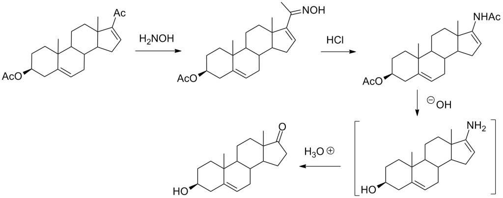 dhea_synthesis