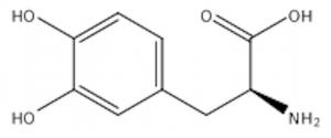 *Macuna Pruriens(L-dopa/GHBooster)* Results ...