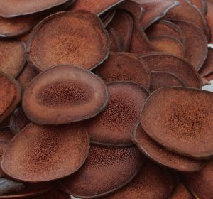 velvet antler slices By Jazzix (Own work) [CC BY-SA 4.0], via Wikimedia Commons