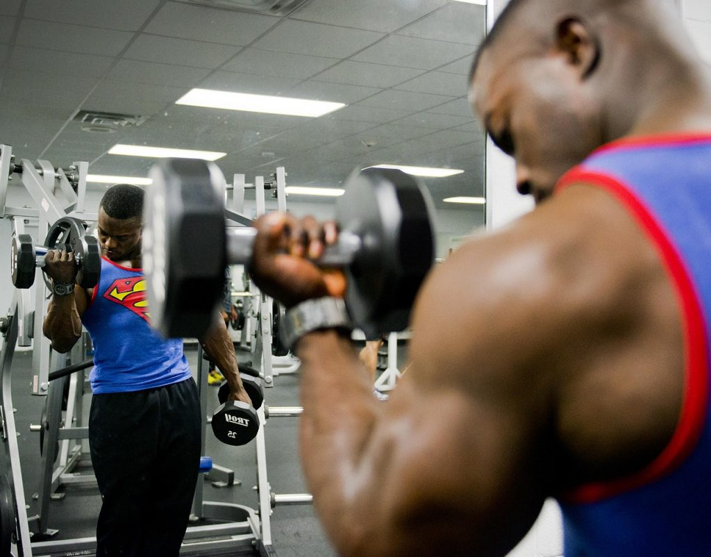 bodybuilding whey protein muscle growth