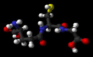 glutathione-3rd-structure