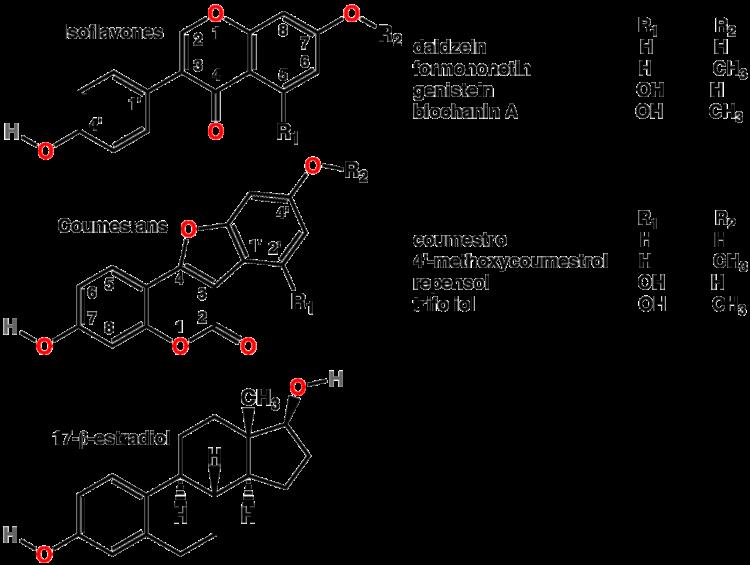 isoflavones-mimic-have-a-similar-structure-to-estradiol-estrogen