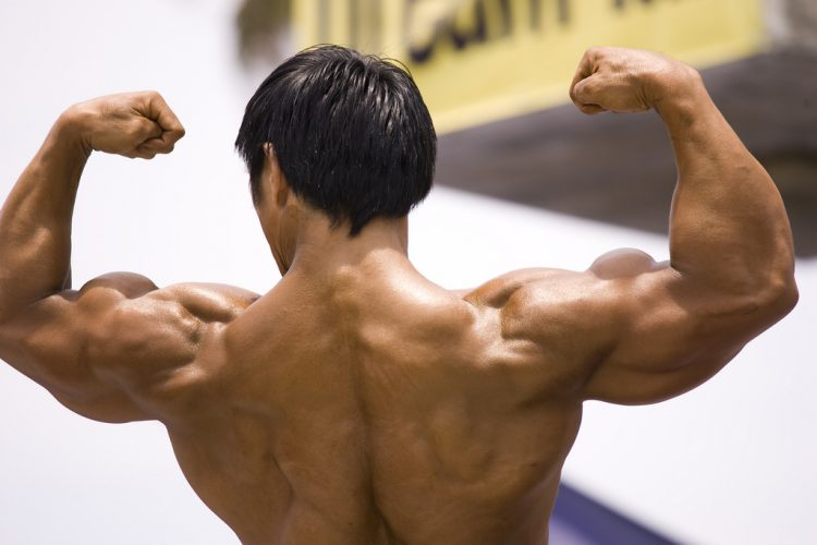 growth hormone muscle mass