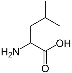 Leucine. By Sten André (Own work) [Public domain], via Wikimedia Commons