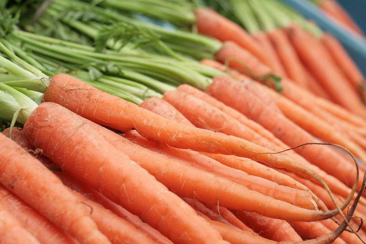 Carrots are an excellent source of vitamin A. By Kander (Own work) [Public domain], via Wikimedia Commons