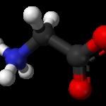 Glycine as a Post Workout