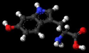 1024px-5-hydroxy-l-tryptophan-3d-balls
