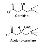 Acetyl-L-Carnitine for Energy