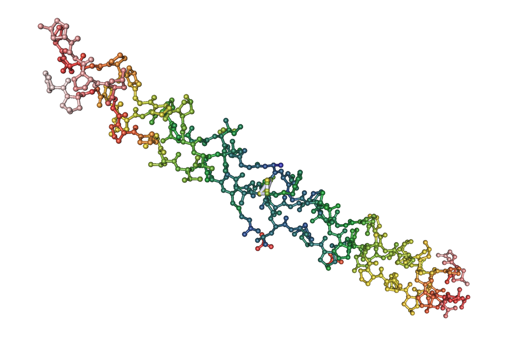 Collagen Protein Supplements In Review