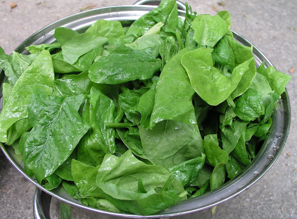 1024px-Spinach_leaves
