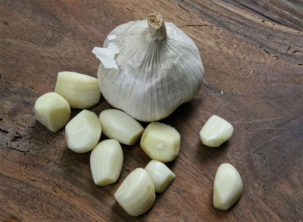 garlic-959931_1280