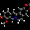 Berberine for Immunity