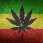 cannabis cbd marijuana flag