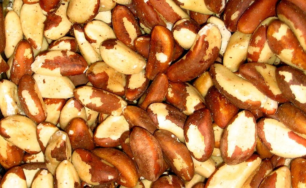 brazil nuts best source of selenium