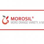Morosil®