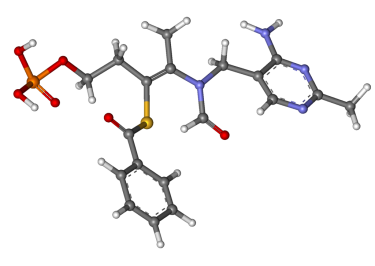 benfotiamine molecular model